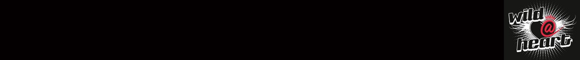 Ein schwarzer Webseiten-Header mit dem Bandlogo von Wild@Heart